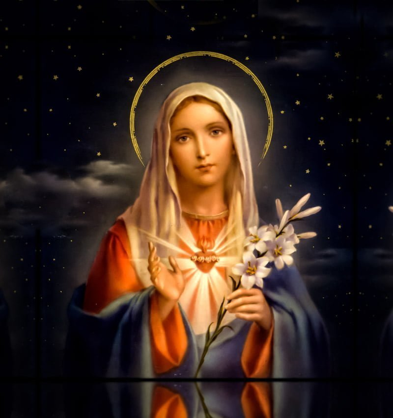 Image result for blessed virgin mary